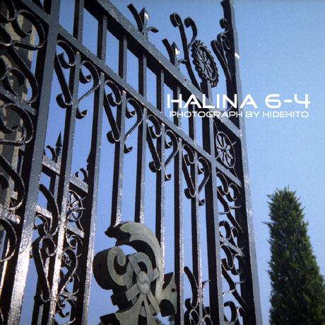 halina041111.jpg